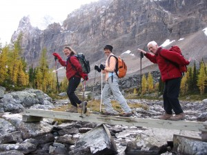 Lake O'Hara Hike