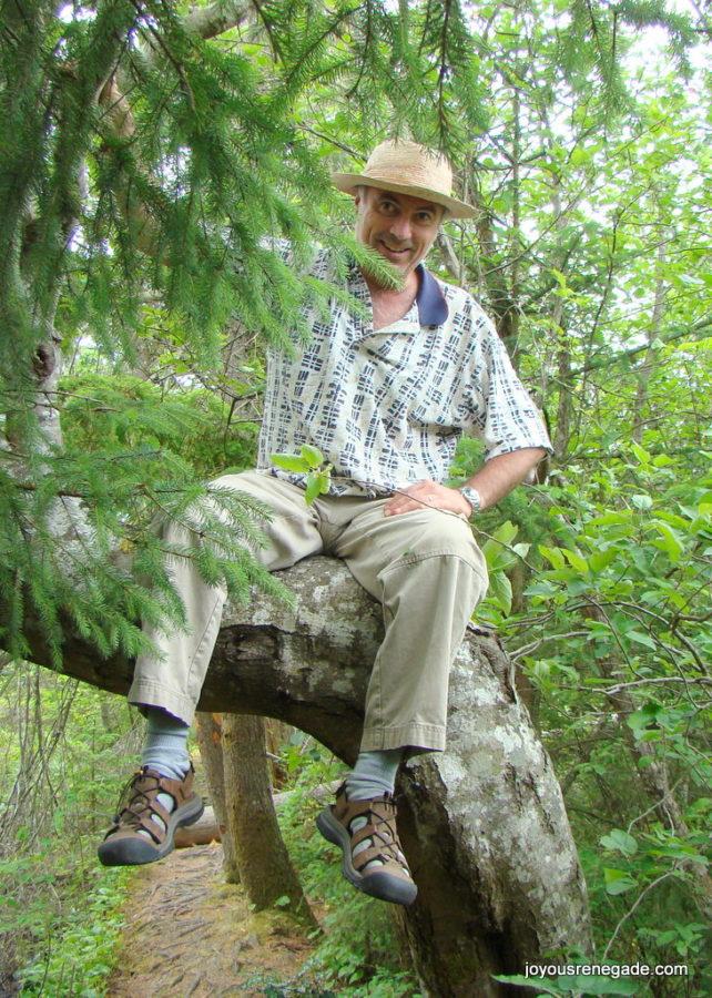 Howard in the tree