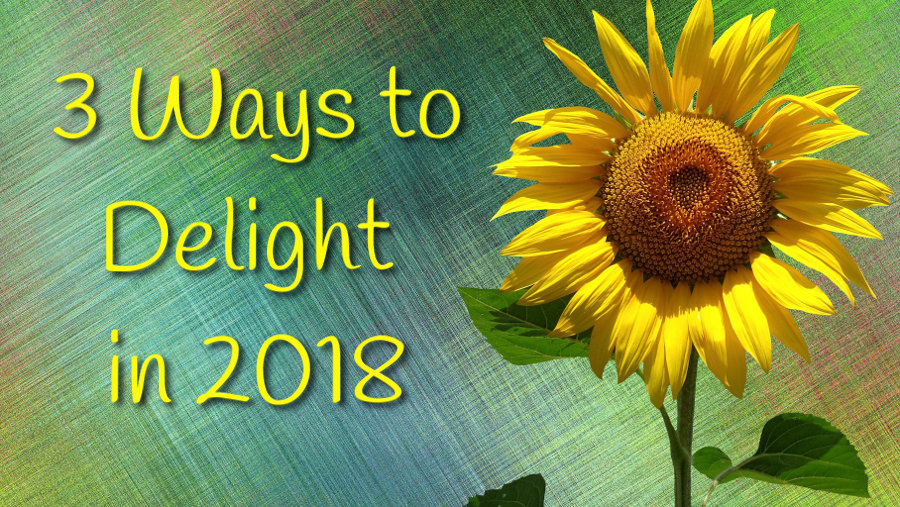 sunflower - 3 Ways to Delight